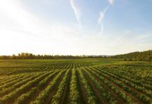 Biogas Benefits
